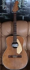 Fender Malibu Flat Top Acoustic